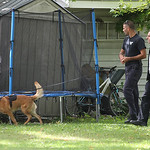 North Ridgeville police search the neighborhood as they look for the last two of three suspects from a break in earlier in the day.