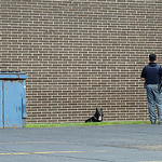 Lorain police and K9 unit apprehended a suspect from a trash bin behind Big Lots off Tower Blvd. on July 24.  Steve Manheim