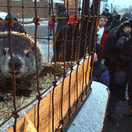 About 150 people came out to WMRN Radio in Marion, Ohio, to hear the state's official groundhog, Buckeye Chuck, make his annual prediction on Groundhog Day, Tuesday, Feb. 2, 2010. Chuck did  …