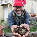 Maurice Small with City Fresh Lorain County. He is an active composter, he uses kitchen waste and other organics and is able to pull out a double palm-full of earth worms that help his garde …