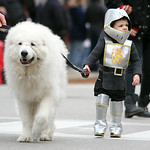 Jace Wilson, 2 1/2, dressed as a knight, walks with Keala, a Great Pyrenees. ANNA NORRIS/CHRONICLE
