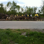 All of the wood that was brought to the street for people who need it to use for their homes.
