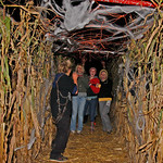 10/17/09 Novotny Farm Market Rt 60 Vermilion, Ohio Holowen Corn Maze. These girls have just been surprised by one of the haunts on the half mile corn Maze walk.This area is drapped with cob  …