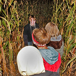 10/17/09 Novotny Farm Market Rt 60 Vermilion, Ohio Holowen Corn Maze. These girls have just been surprised by one of the haunts on the half mile corn Maze walk. In forground in yellow hood i …