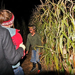 10/17/09 Novotny Farm Market Rt 60 Vermilion, Ohio Holowen Corn Maze. These girls have just been surprised by one of the haunts on the half mile corn Maze walk. Photo by Tom  Mahl