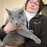 Lori Garcia, administrative secretary, holds Sam, a Russian blue cat, in her office at Lorain City Garage on Jan. 24.  Sam catches mice in the city garage building.  Steve Manheim