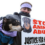 Katie Noble, of Amherst, with Dude, a rat terrier, at a 'Justice for Herbie' dog walk, at Streator Park in Lorain on Dec. 9. The walk calls attention to animal abuse and neglect in the wa …