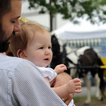 Jason Taylor, with daugher Emma, 8 months old, of Cleveland, watch the horses at the Lorain County Fair Aug. 24.  Steve Manheim