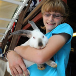 Emily Klier, 14, of Wellington, holds one of her  Grand Champion meat rabbits before the Junior Fair auction on Aug. 23.  Her pen of three rabbits sold for $550.00.    Steve Manheim