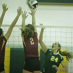 Avon Lake's #2 Whitney Craigo and Amherst's #24 Ashley Makruski.
