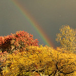 Ohio welcomes winter with a rainbow over Route 20 in Elyria on Oct. 23. This was shot in Elyria on Brandston Avenue. BRUCE BISHOP/CHRONICLE