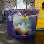 Johnnie Wilson Middle School assistant principal Bryan Hilko takes the plunge into the water in the dunk tank on Aug. 20 at the back to school open house. KRISTIN BAUER | CHRONICLE