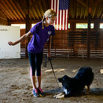 Nichole Charnigo, 15, of Medina, works with her dog Bailey at the Medina County Fair. KRISTIN BAUER | CHRONICLE
