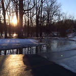 Stephanie Elisabeth Buza took this photo of Mill Hollow under water on Feb. 21.