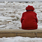 Dawn Neely Randall took this photo of a woman looking at the ice on the Vermilion River on Feb. 22.