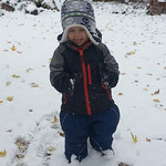 Silas Judy, 2, enjoys playing in the snow on Nov. 12.