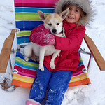 Mali Alberts, 4, of Elyria, plays in the snow with the family dog, Abbey, on Nov. 12.