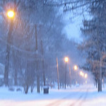 Jeanne Buttle Williams shared the view on Garford Avenue on Dec. 14.