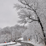 Avey Wressell took this photo on the way to Mill Hollow on Feb. 2.