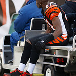 Cincinnati Bengals wide receiver Terrell Owens (81) rides off the field on a cart with a possible knee injury in the first half of an NFL football game against the Cleveland Browns, Sunday,  …