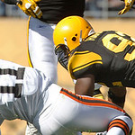 Pittsburgh Steelers linebacker James Harrison (92) hits Cleveland Browns wide receiver Mohamed Massaquoi (11) on an attempted pass in the second quarter of the NFL football game, Sunday, Oct &#8230;