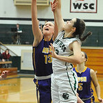 Avon's Allie Bjorn shoots over Elyria Catholic's Becky Horvath. STEVE MANHEIM/CHRONICLE