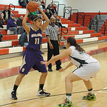 Vermilion's Jasmine Porter looks to pass over Holy Name's Erica Davis. STEVE MANHEIM/CHRONICLE