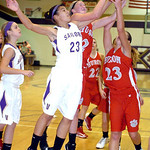 Vermilion's #23 Jasmine Porter fights Huron's #2 Audra Wiesehart and #23 Brittany Mayer for the rebound.