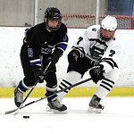 Elyria Catholic's Will Gentry attempts to knock the puck away from Midview's Tommy Coon. ANNA NORRIS/CHRONICLE