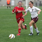 Firelands' #20 Rebecca Jackson and Wellington's #2 Brittany Evans vie for the ball.