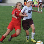 Wellington's Madison Schneider pushes off against Cuyahoga Heights' Sierra McNeilly. STEVE MANHEIM/CHRONICLE