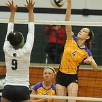Avon's #4 Rachel Steinert hits over EC's Karissa McGrath Sep. 25.  photo by Steve Manheim