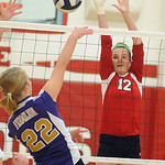Firelands&#039; Dalaney Rogala defends against Vermilion&#039;s Lauren Pawlowski.<br /> Steve Manheim/Chronicle