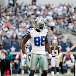 Dallas Cowboys wide receiver Dez Bryant (88) celebrates a catch during the second half of an NFL football game against the Cleveland Browns Sunday, Nov. 18, 2012 in Arlington, Texas. (AP Pho &#8230;