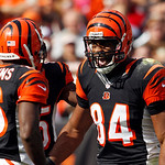 Cincinnati Bengals tight end Jermaine Gresham (84) celebrates his 55-yard touchdown catch with Andrew Hawkins (16) in the first quarter of an NFL football game against the Cleveland Browns S …