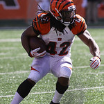 Cincinnati Bengals running back BenJarvus Green-Ellis in action against the Cleveland Browns in an NFL football game, Sunday, Sept. 16, 2012, in Cincinnati. (AP Photo/Tom Uhlman)