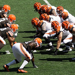 Cincinnati Bengals quarterback Andy Dalton (14) calls a play against the Cleveland Browns in the first half of an NFL football game, Sunday, Sept. 16, 2012, in Cincinnati. (AP Photo/Tom Uhlm …