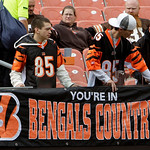 Cincinnati Bengals fans hang a banner in Cleveland Browns  Stadium before an NFL football game between the Bengals and Cleveland Browns, Sunday, Oct. 4, 2009, in Cleveland. (AP Photo/Mark Du …