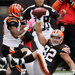 Cleveland Browns tight end Steve Heiden (82) celebrates after a one yard touchdown catch against Cincinnati Bengals linebacker Dhani Jones, left, in the second quarter of an NFL football gam …