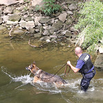 Police search for the man who allegedly robbed the Fifth Third Bank on Broad Street. Officer Rick Walker leads his dog along the river near East Bridge just a short distance from where he wa …