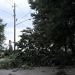 Fallen trees littered Lake Road in Avon, Oh after a severe storm on Wednesday evening, July 10. KRISTIN BAUER | CHRONICLE