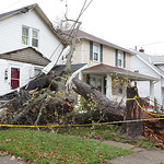 A tree smashed into the porch of a home on Florida Ave in Lorain.