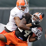 Cleveland Browns cornerback Sheldon Brown (24) steals the ball away from wide receiver Brian Robiskie during the Browns NFL football training camp in Berea, Ohio on Wednesday, Aug. 4, 2010.  …