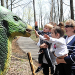 Dawson Decker, 2, left, with sister Lily, 3, and great-grandmother Sharon Decker, of Vermilion, check out the parasaurolophus, at the Lorain County Metro Parks 'Dinosaurs!' exhibit at Carlis ...
