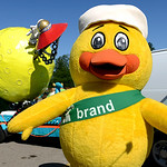 The Duck Tape duck visited students on the Elyira High School float just before the annual Duck Tape Parade. KRISTIN BAUER | CHRONICLE