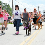 Members of the Lorain Pooch Patrol march with their four-legged friends in the parade. ANNA NORRIS/CHRONICLE