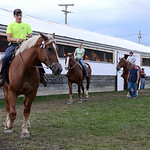 Some of the draft horses were brought out for a little bit of exercise on Aug. 20 at the Lorain County Fair. KRISTIN BAUER | CHRONICLE