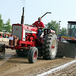 Matthew Fye, of Wellington, pulls his Farmall 656 tractor during the Lorain County Fair on Saturday morning.  ANNA NORRIS/CHRONICLE