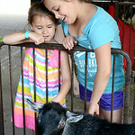 Elizabeth West, 5, and Jessica Davis, 11, of Wakeman, visit with some of the goats on Aug. 20. KRISTIN BAUER | CHRONICLE