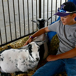 Avery Blakenship, 11, of LaGrange, sits with his goats Winx and Goatee on Aug. 20. KRISTIN BAUER | CHRONICLE